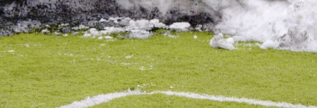 Synthetic Turf Snow Removal Webinar